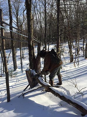 Sugaring at Rock Maple Mountain
